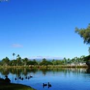 久しぶりの良い天気!今日のハワイ島ヒロ(2011.11.22)