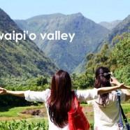 メリー・モナーク限定ツアー・ハワイ島ヒロ発【ワイピオ渓谷とヒイラ ヴェの滝巡りツアー】の販売を開始しました!