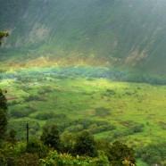 ハワイ島BIG-JINギャラリー:ワイピオ渓谷にかかる虹