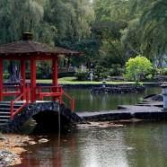 ハワイ島観光スポット・リリウオカラニ公園