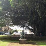 ハワイ島観光スポット『カラカウア・パーク』