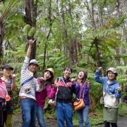 ハワイ島観光ツアー『ザ・朝火山ツアー』リポート 10月26日
