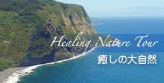 ハワイ島マイカイ・オハナ・ツアーがご提供する癒しのハワイ島大自然巡り