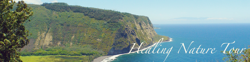 癒しのハワイ島大自然巡り