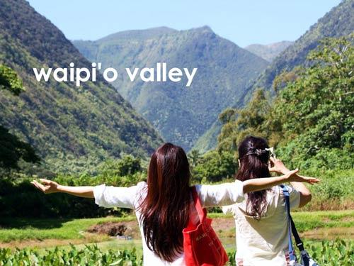 ハワイ島のワイピオ渓谷