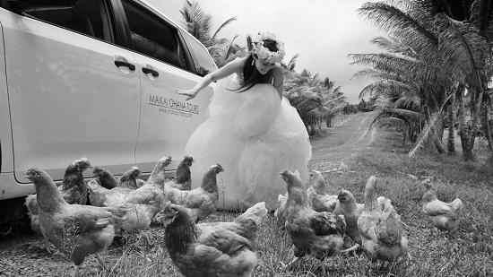YOSHチャーター(ハワイ島のベストスポットでハネムーンカップルのウェディング姿を撮影!)2