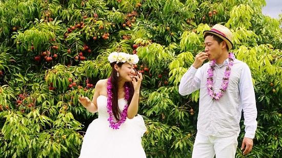 YOSHチャーター(ハワイ島のベストスポットでハネムーンカップルのウェディング姿を撮影!)3