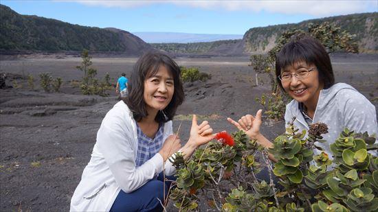 ハワイ島観光ツアー『モーニング・キラウエア』リポート 12月11日(ハワイ島マイカイオハナツアー)005