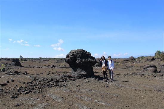 ハワイ島観光ツアー『ザ・朝火山ツアー』リポート 12月7日(ハワイ島マイカイオハナツアー)006