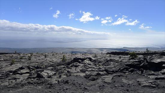 ハワイ島観光ツアー『ザ・朝火山ツアー』リポート 12月13日(ハワイ島マイカイオハナツアー)007