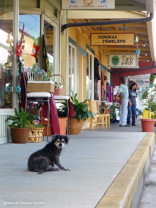 犬ものんびり、ホノカアの町並み