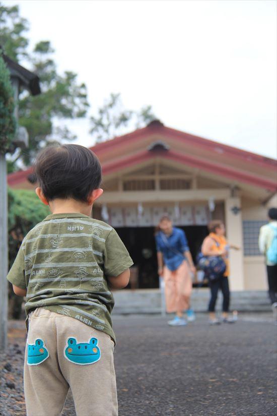 ハワイ島観光ツアー013